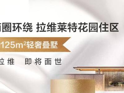 """南上海的""""静安府""""即将推出爆款叠墅!【华润置地赛拉维】品牌背书+纯正地铁房+5大商圈环绕!"""