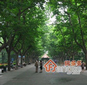 襄阳北路44弄外景图