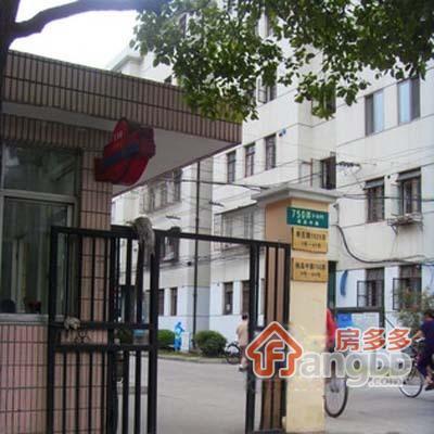 金杨十一街坊