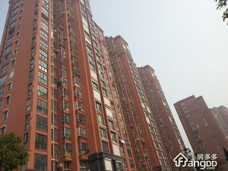 鑫苑国际城市花园(新区)小区图片