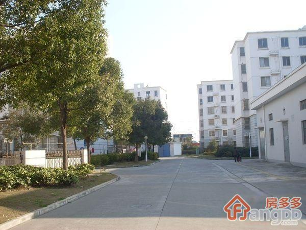 龚路新城小区图片