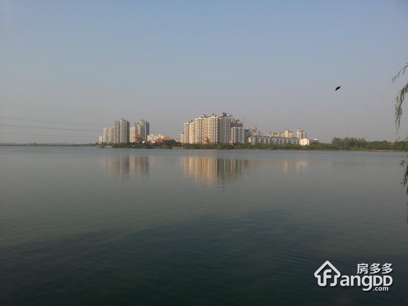 华生金珠港湾