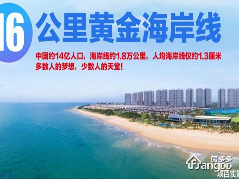碧桂园鼎龙湾国际海洋度假区_3