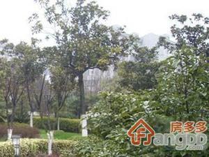 城大新村小区图片