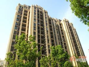 新天地荻泾花园(公寓)小区图片