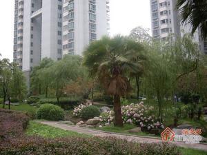 嘉利明珠城小区图片