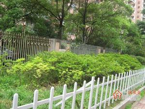 和平花苑小区图片