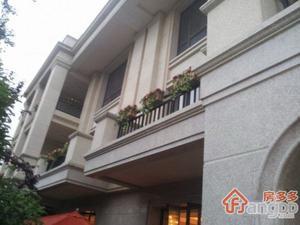 合生前滩一号(公寓)小区图片