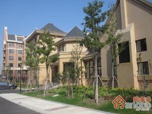 红庄新苑小区图片