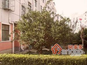 车站新村(奉贤)小区图片
