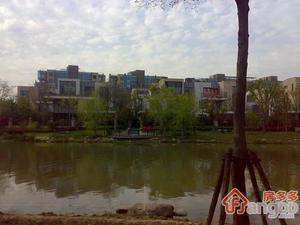 金地湾流域(公寓)小区图片
