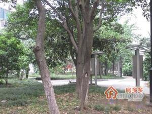 三元一村小区图片