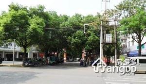 鲈乡二村小区图片