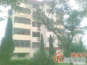 东环新村小区图片