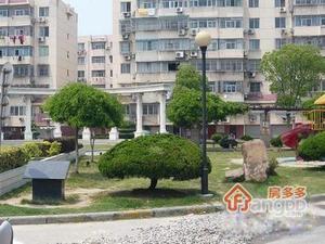 龙港花苑小区图片