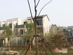 中海胥江府小区图片