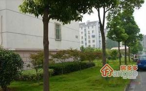 龙西新村小区图片