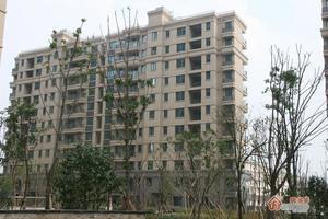 枫华广场小区图片