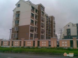 尹东新村小区图片