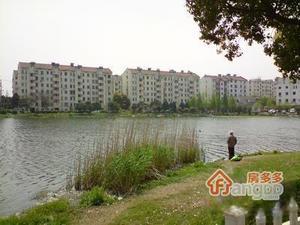 翠园新村小区图片