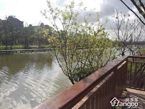 河畔艺墅小区图片