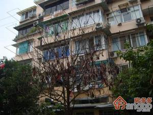 南杨小区(长清路)小区图片