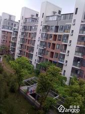 金城上品(公寓)小区图片