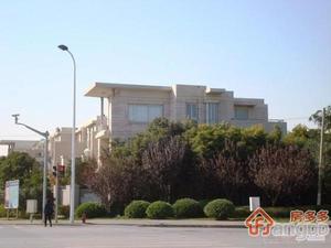 张江汤臣豪园一期(别墅)小区图片