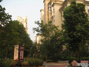 绿地崴廉公寓小区图片