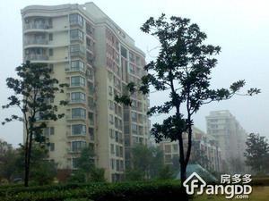 浦江世博家园十一街坊小区图片