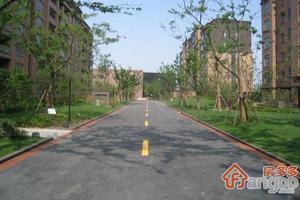 尚东国际名园小区图片