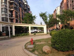 华亭新家银杏苑小区图片