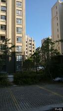 绿地金山名邸(公寓)小区图片