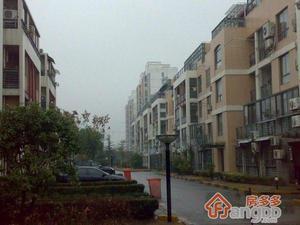 浦江世博家园五街坊小区图片