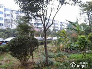 嘉丰公寓小区图片