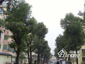 苏锦二村小区图片