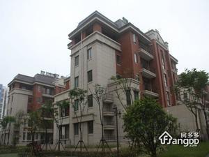 乾耀东港小区图片