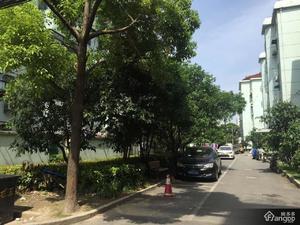 龙南五村小区图片