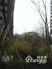 中海国际社区一区小区图片