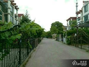 金港花园(别墅)小区图片
