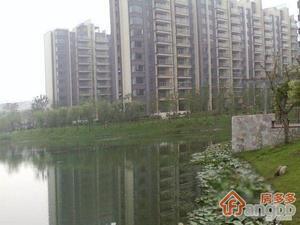 朗悦湾小区图片