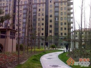 金领国际(公寓)小区图片