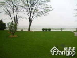 太湖古北雅园小区图片