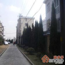 颛溪八村小区图片