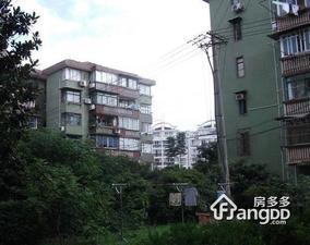 金桥新村一街坊小区图片