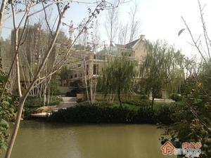 虹桥宝龙城小区图片
