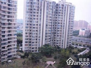 金禾新苑小区图片