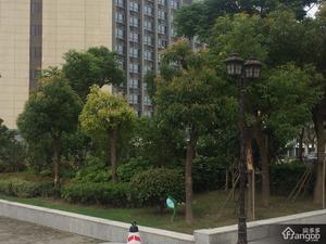 鸿音广场小区图片