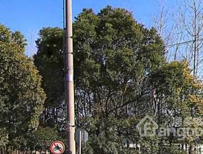 中茂世纪财富广场小区图片