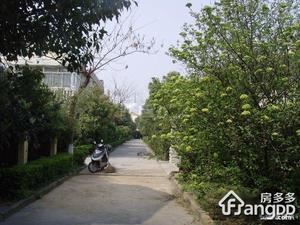 长堤花园别墅小区图片